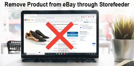 Remove Product from eBay through Storefeeder