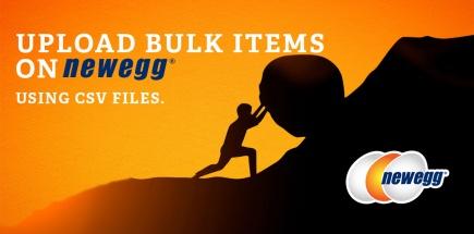 newegg bulk upload